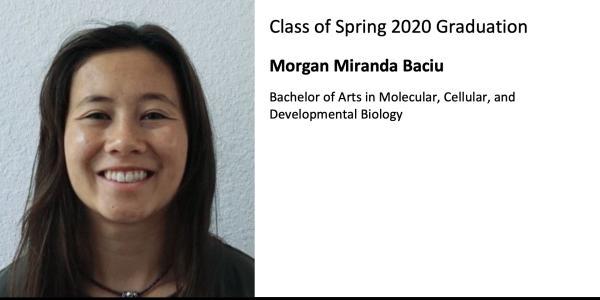 Morgan Miranda Baciu