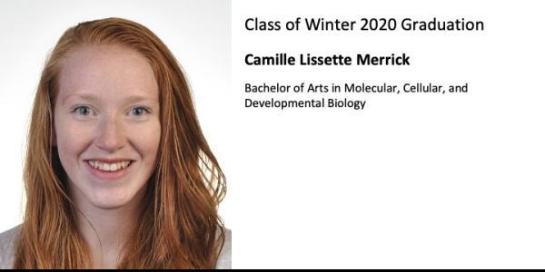 Camille Lissette Merrick