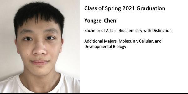 Yongze  Chen