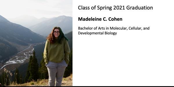 Madeleine C. Cohen