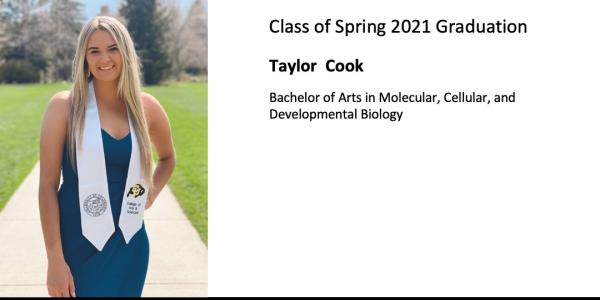 Taylor  Cook