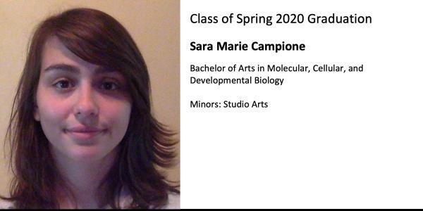 Sara Marie Campione