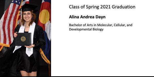 Alina Andrea Dayn