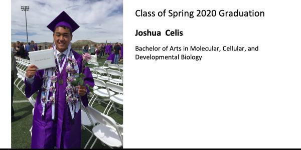 Joshua  Celis