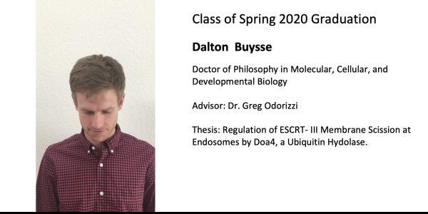 Dalton  Buysse