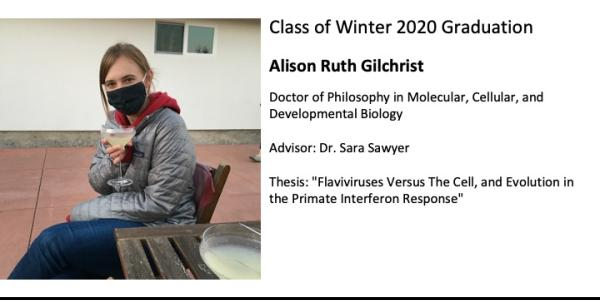 Alison Gilchrist