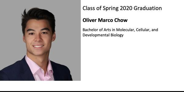 Oliver Marco Chow