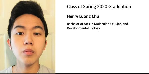 Henry Luong Chu