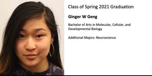 Ginger W Geng