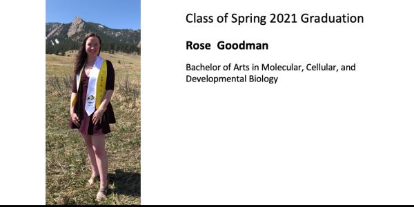 Rose  Goodman