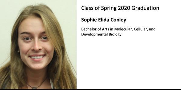 Sophie Elida Conley