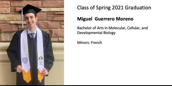 Miguel  Guerrero Moreno
