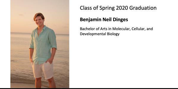 Benjamin Neil Dinges