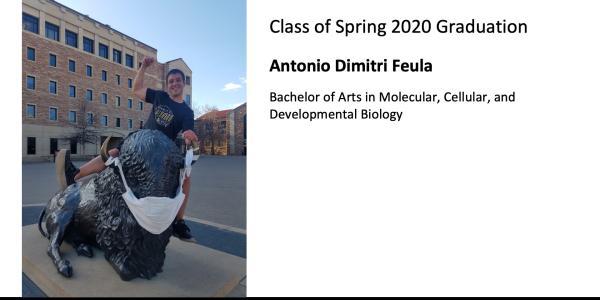 Antonio Dimitri Feula