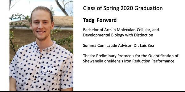 Tadg  Forward