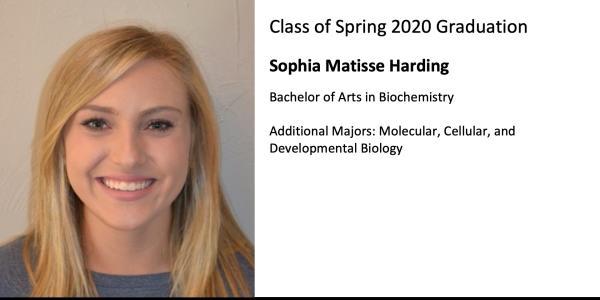 Sophia Matisse Harding
