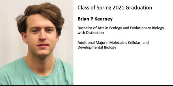 Brian P Kearney