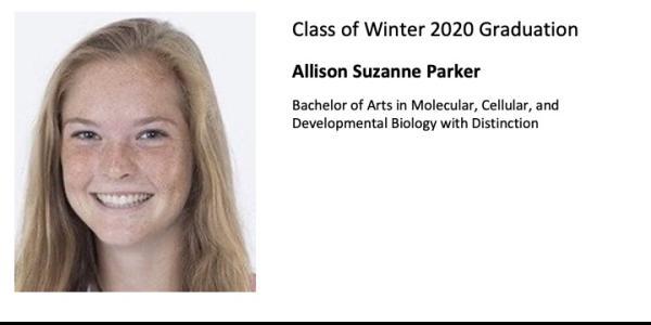 Allison Suzanne Parker