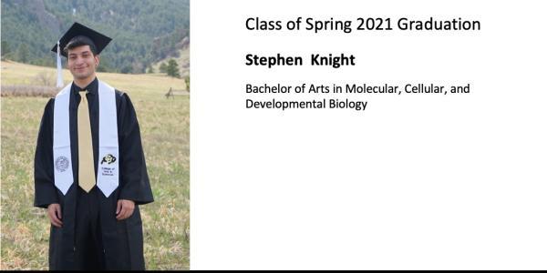 Stephen  Knight