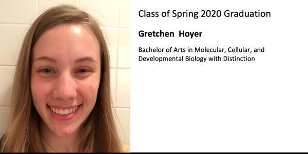 Gretchen  Hoyer