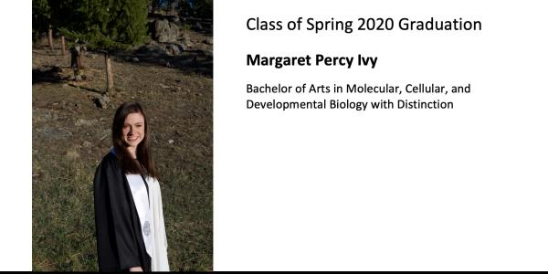 Margaret Percy Ivy
