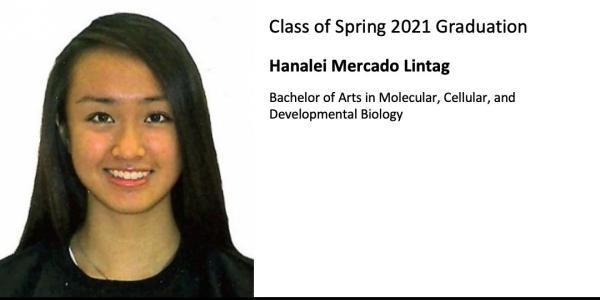 Hanalei Mercado Lintag