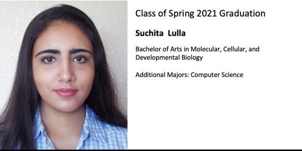 Suchita  Lulla
