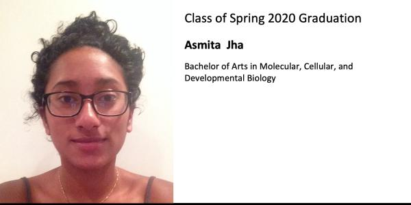Asmita  Jha