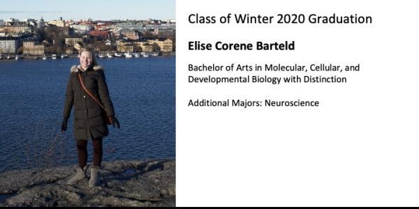 Elise Corene Barteld