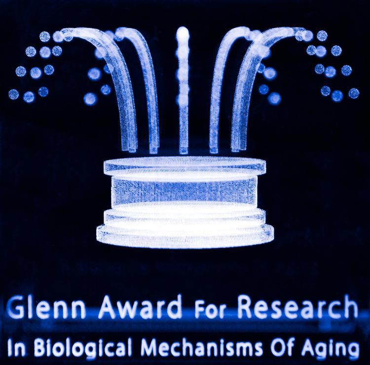 Glenn Award for Research