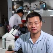 Prof. Ding Xue