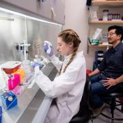 Packard Fellowship recipient Ed Chuong, assistant professor of molecular, cellular and developmental biology, works in his lab with undergraduate student Isabella Horton. Credit: Glenn Asakawa/CU Boulder