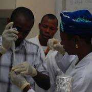 Participants in a modern cell‐biology 'boot camp' in Ghana hone their skills in science, technology, and lab work. Photo courtesy of Dick Macintosh.