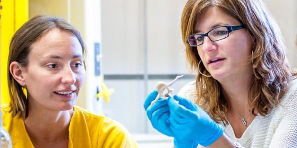student and professor studying bones in lab