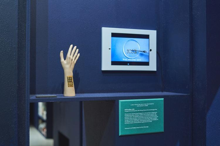 E-skin at museum exhibit