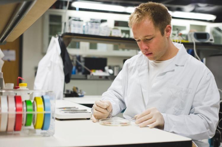 Eric Kramer dissecting tissue