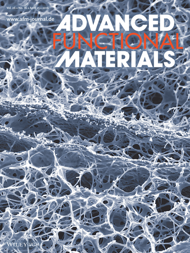 Advanced Functional Materials cover #2