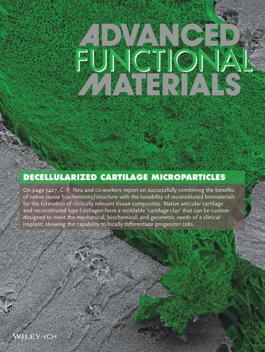 Advanced Functional Materials cover #1