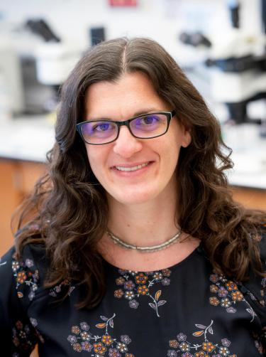 Associate Professor Sarah Calve at CU Boulder's Department of Mechanical Engineering