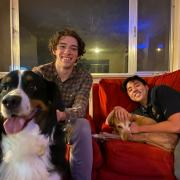 Puppy pal prosthetics
