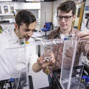 "Nick Kellaris, a materials science and engineering graduate student, left, and Mechanical engineering graduate student Eric Acome, looks over liquified artifical ""muscle"" or soft robot material in the Keplinger Research Lab. Nick Kellaris, a materials science and engineering graduate student, left, and mechanical engineering graduate student Eric Acome look over liquified artifical ""muscle"" or soft robot material in the Keplinger Research Lab."