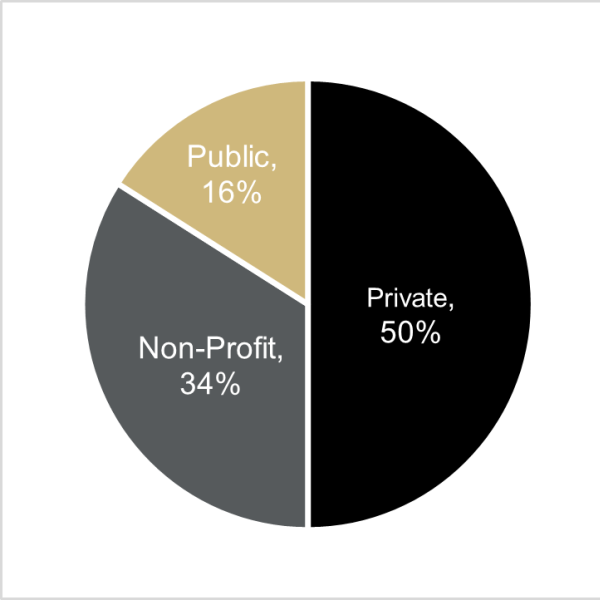 graph of class of 2017 employment by sector, which shows 46% private, 12% public, 31% non-profit