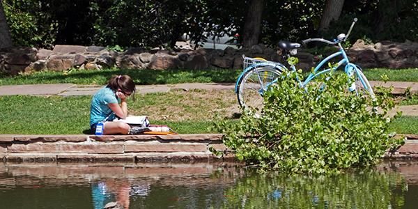 Person studying by Varsity Lake Bridge.