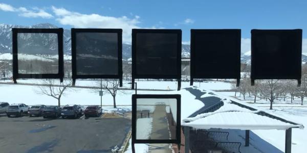 dynamic tint windows