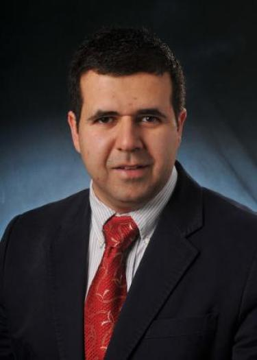 Mahmoud I. Hussein