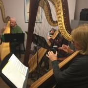 janet harriman harp