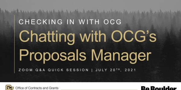 Checking in with OCG: Chatting with OCG's Proposals Manager