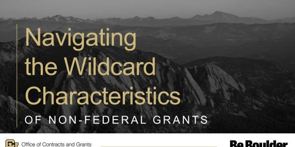 Navigating the Wildcard Characteristics of Non-Federal Grants
