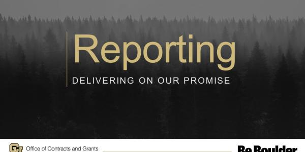 Reporting Delivering on Our Promise