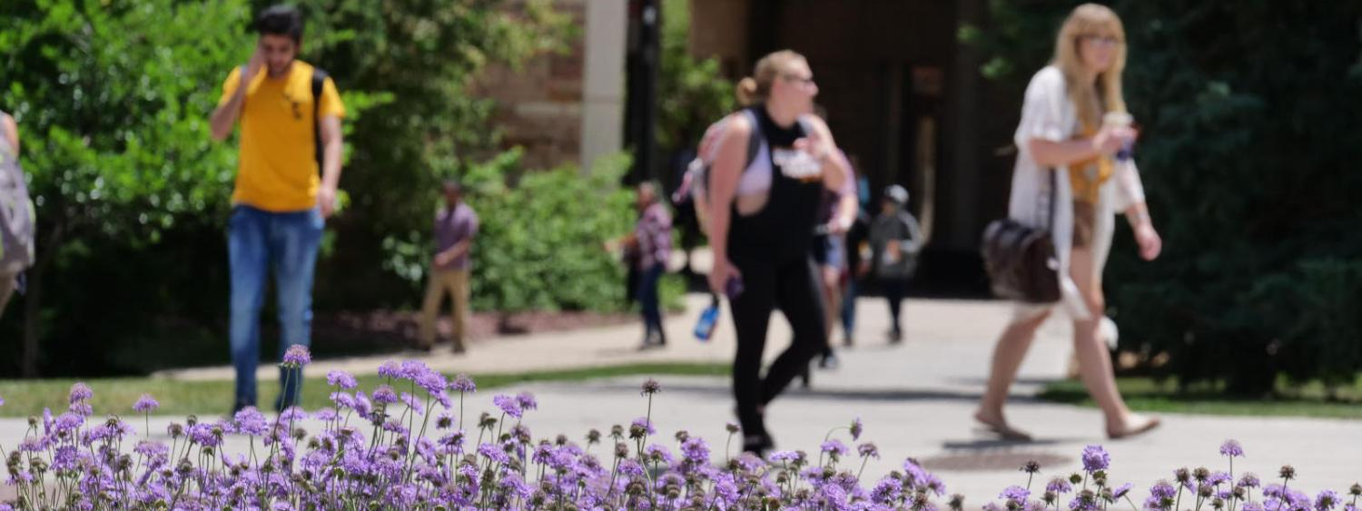 Flowers blooming on a campus and students walking by in the background